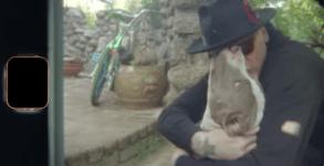 Blink-182 lanca video emocionante de Home Is Such A Lonely Place