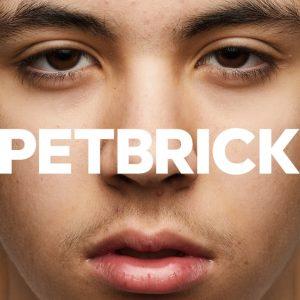 Petbrick capa